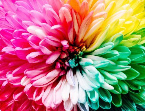 Maak de gewenste indruk met het juiste kleurgebruik